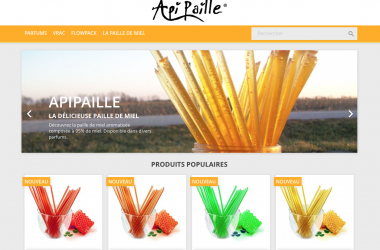 Création site internet Apipaille